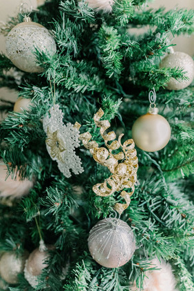 anna-kay-photography-shecasa-christmas-3