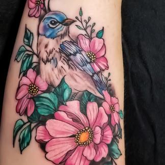 Blue jay wild roses forearm tattoo