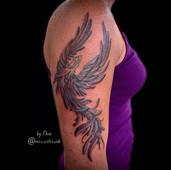 phoenix tattoo maximum colour