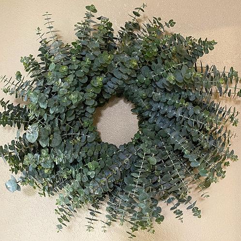 "Medium Fresh Eucalyptus wreath 20"""