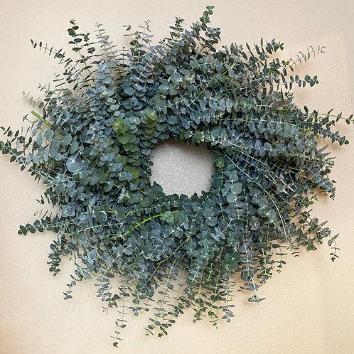 "Large Fresh Eucalyptus wreath 26"""