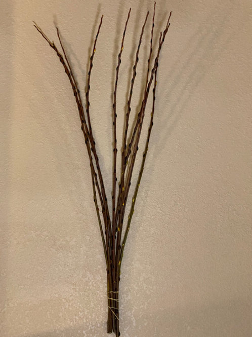 Long pussy willow bunch 3ft