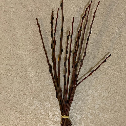 Small pussy willow bunch