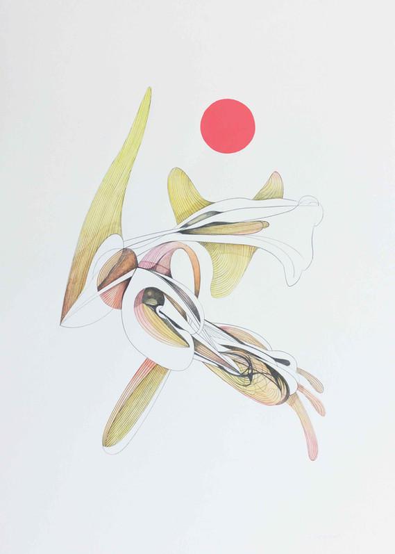 Venus 2018 70x50cm  Graphite pencil, watercolour and acrylic on paper