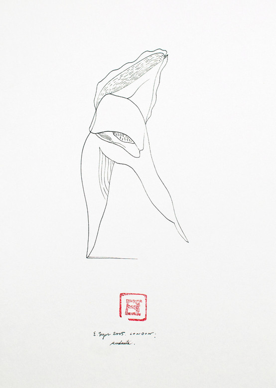 Andante 2005 21x29'5cm. Ink on paper