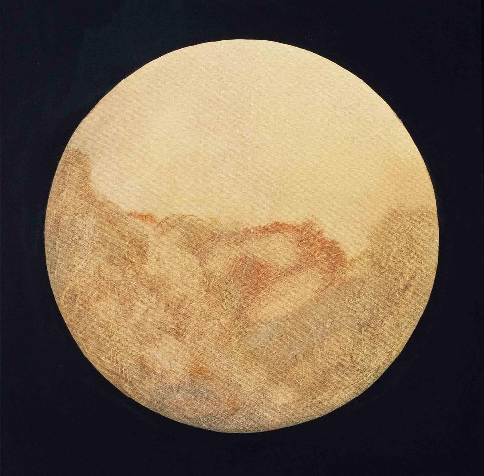 First Light 2015 60x60cm Oil on canvas