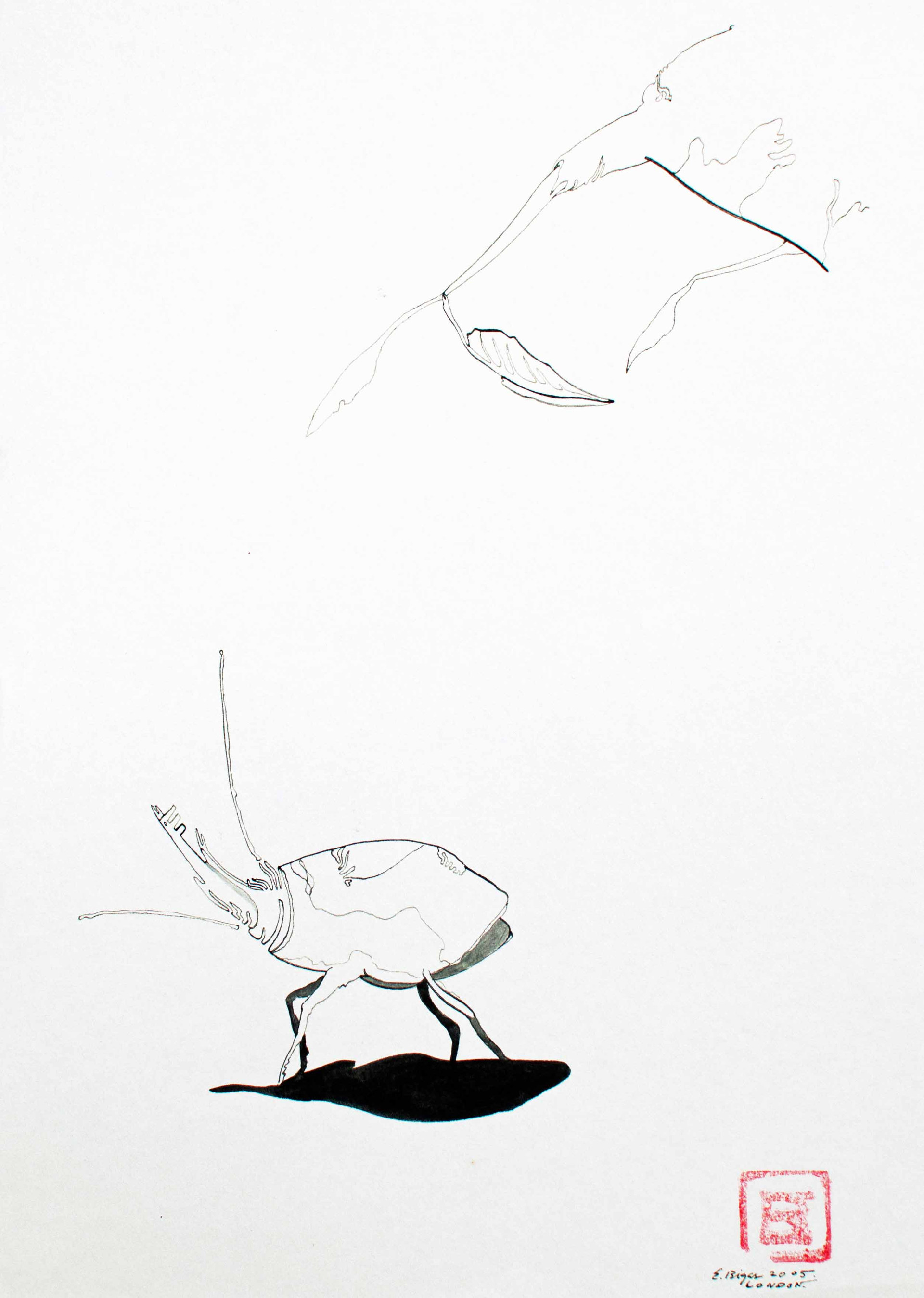 Untitled 2005 21x29'5cm. Ink on paper