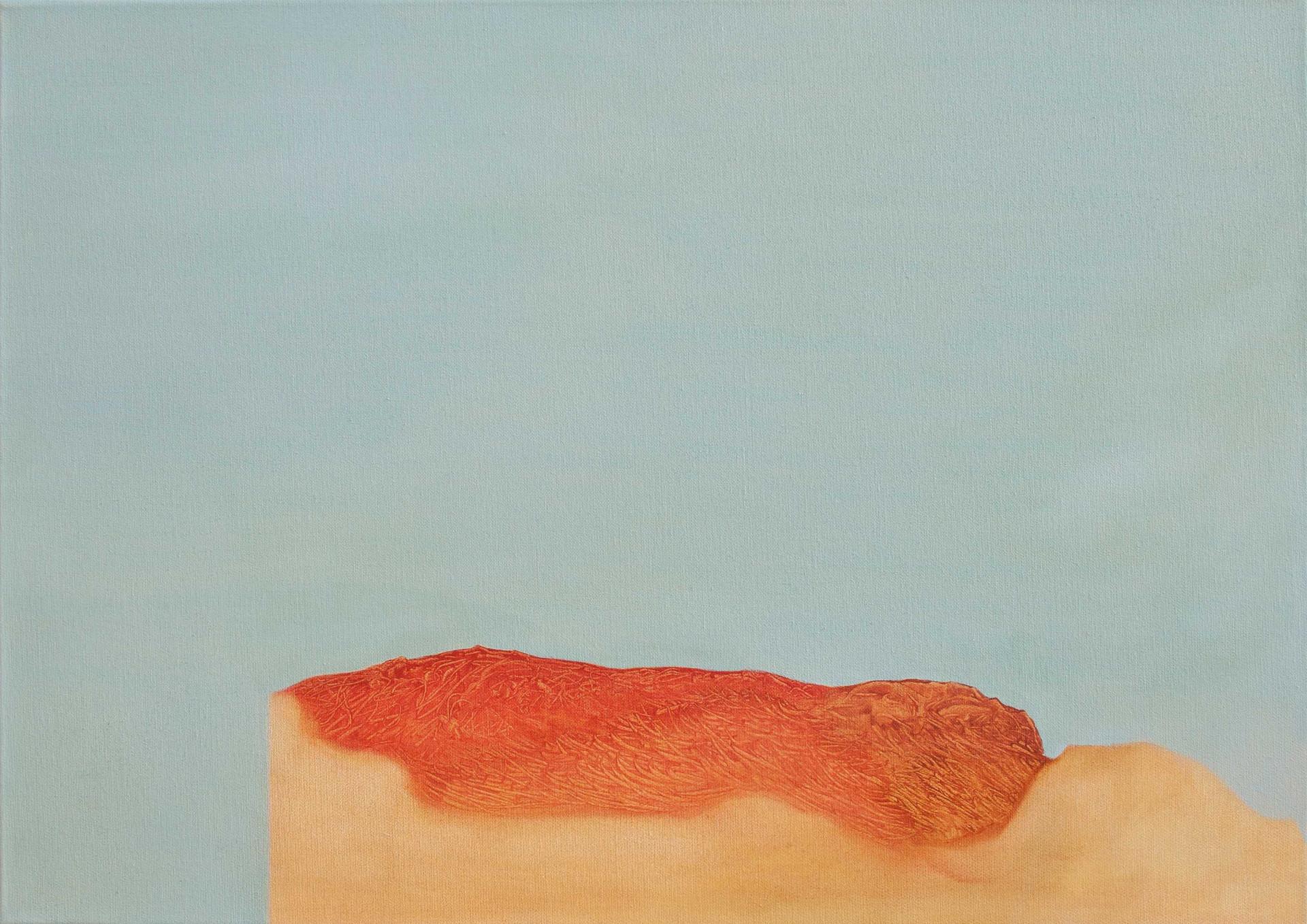 El silenci 2016, 70x50cm. Oil on canvas