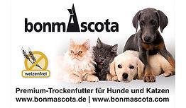 BannerWebsite_Bonmascota.jpg