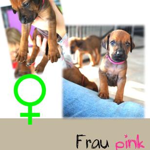 Frau_pink_4 Wochen