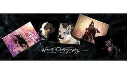 HeartPhotography_LogoWebsite.jpg