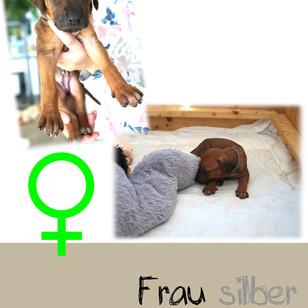 Frau_silber_4 Wochen