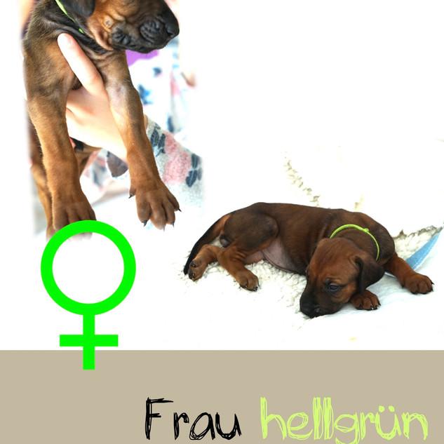 Frau_hellgruen_4 Wochen