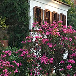 Grapevine House, Sirince Terrace Houses, Boutique holiday cottage,Sirince, Izmir Province, near Ephesus, Turkey