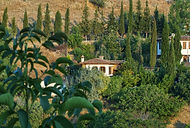 Grapevine House, Sirince Terrace Houses, Boutique holiday cottage,Sirince, Izmir Province, near Ephesus, Turkey