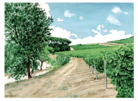 Top Vineyard Wedding Venue in Portugal