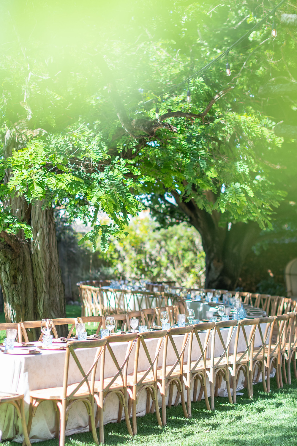 A long and curved table for an outdoor wedding decoration idea