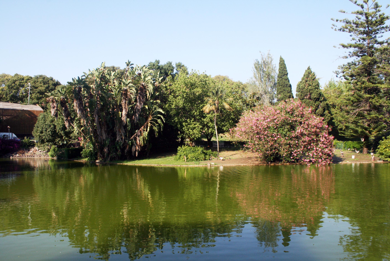 Lisbon Garden
