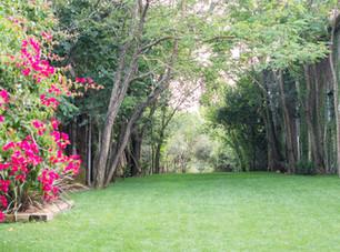 Entrance Tuin van Quinta do Torneiro. Mijn destination wedding