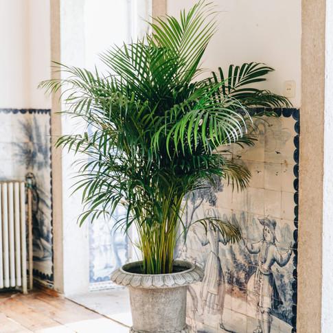 Details van de kamer bij Quinta do Torneiro in Lisbon, Portugal