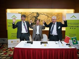Mercados chinos interesados en un suministro de soja responsable