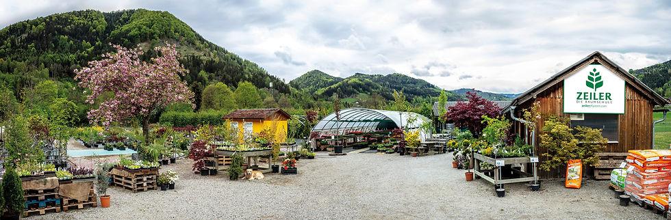 ZEILER-Die-Baumschule.jpg