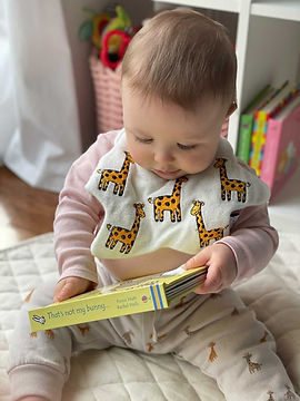 Reading Giraffe Baby.JPG