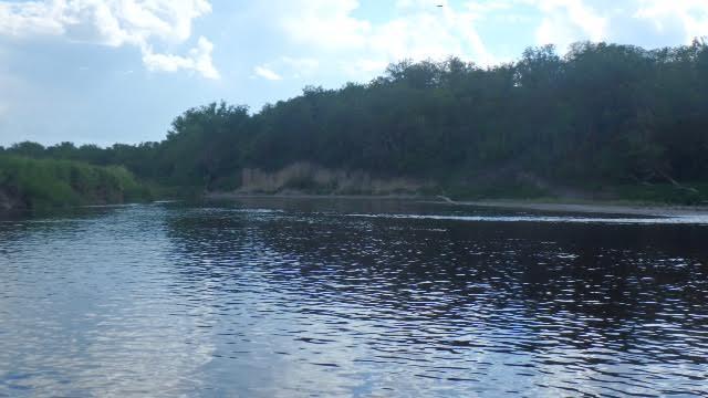 kayak 41