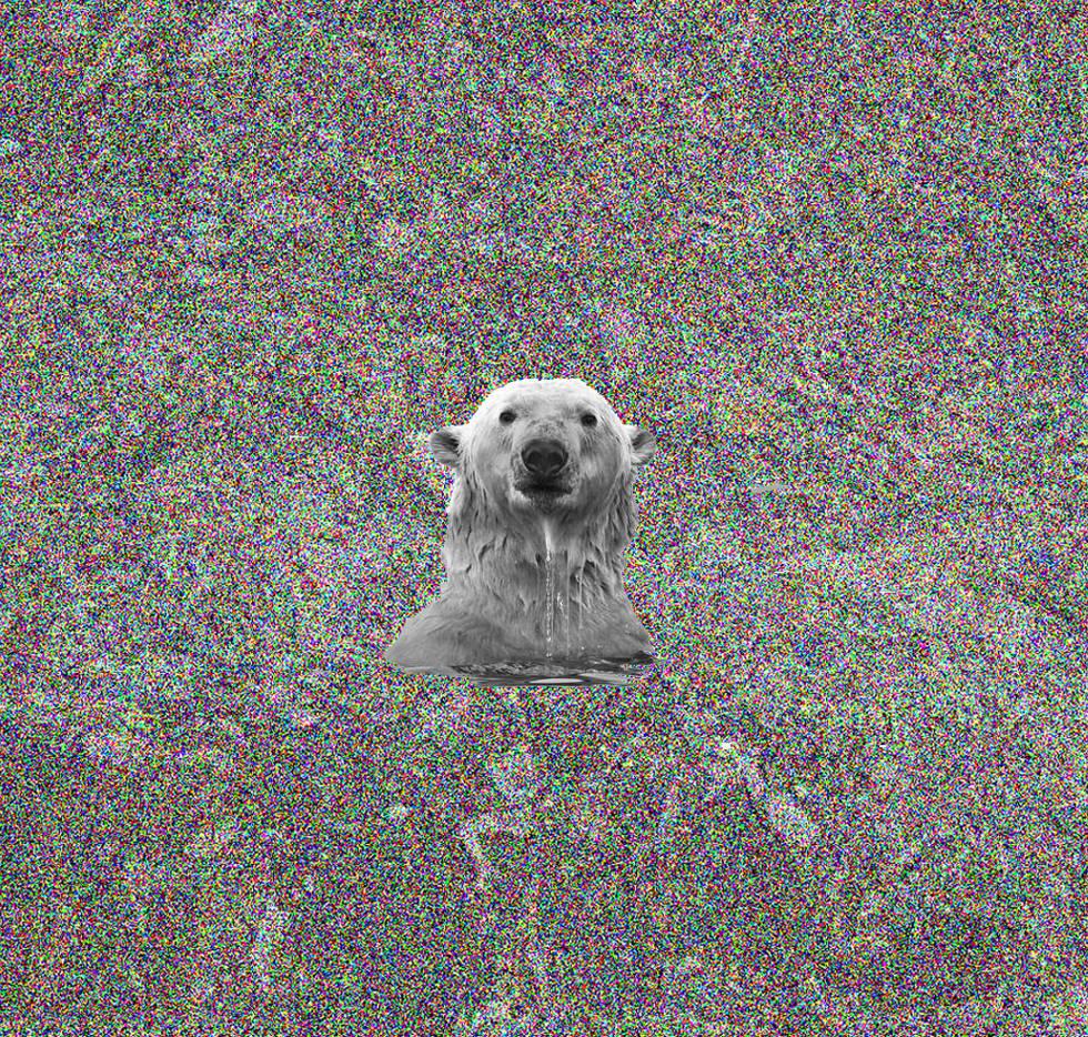 Copia de oso3.jpg