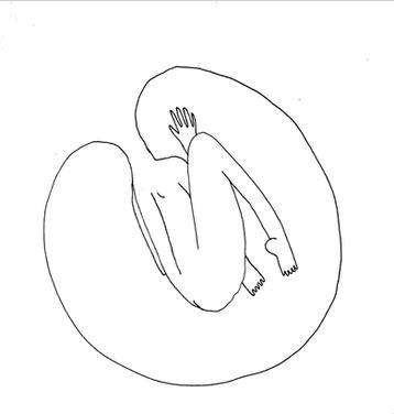 cuerpo1.JPG