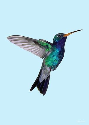 Blue Hummingbird | Sophie Gibcus