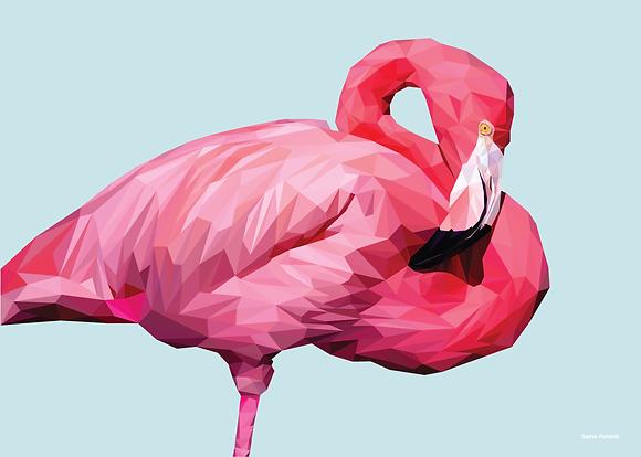 Flamingo | Sophie Gibcus