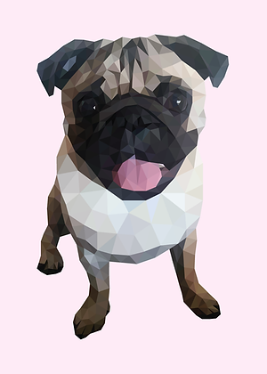 Pug | Sophie Gibcus