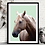 Thumbnail: Horse | Sophie Gibcus
