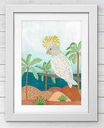 'Sylvia the Sulphur-crested Cockatoo' | Aggie Dolan