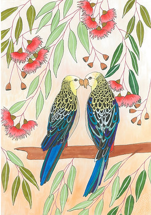 'Phineas and Percival the Pale-headed Rosellas' | Aggie Dolan