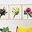 Thumbnail: Australian Native Flowers - Set of 3 | Sophie Gibcus