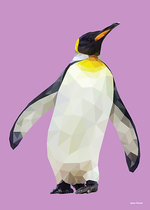 Penguin | Sophie Gibcus