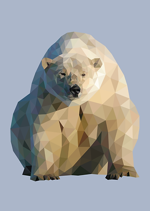 Polar Bear | Sophie Gibcus