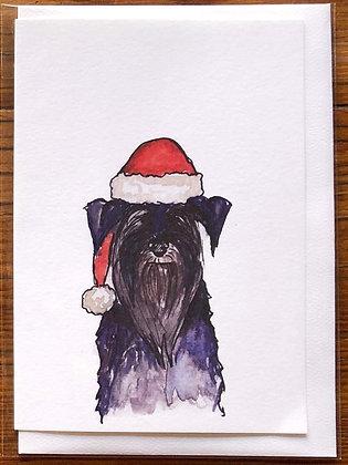 Sooty - Greeting Card  | Alice Wilkinson