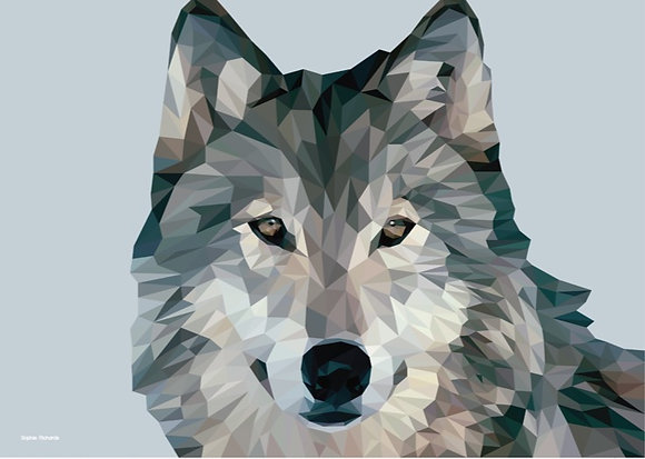 Wolf | Sophie Gibcus