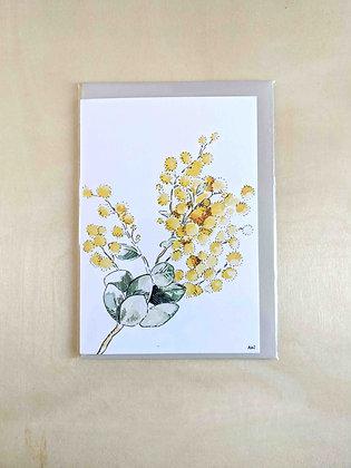 Wattle - Greeting Card  | Alice Wilkinson