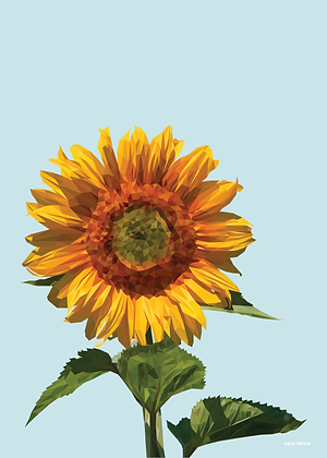 Sunflower | Sophie Gibcus