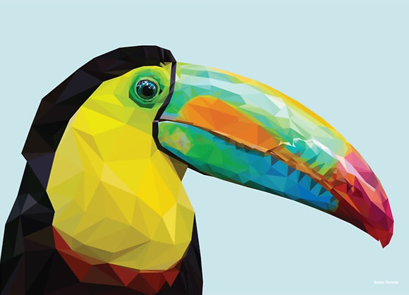 Toucan | Sophie Gibcus