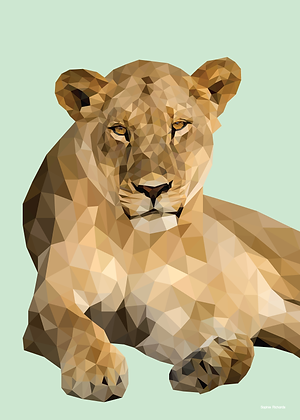 Lioness | Sophie Gibcus