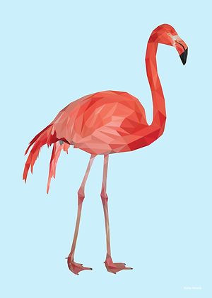 Tall Flamingo | Sophie Gibcus