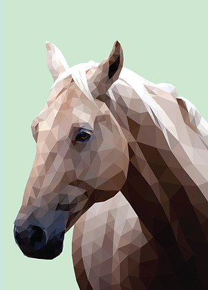 Horse | Sophie Gibcus