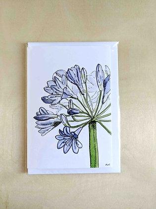 Aggie - Greeting Card  | Alice Wilkinson