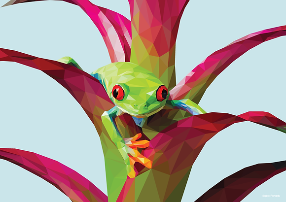 Frog | Sophie Gibcus