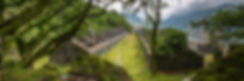 DSCF5462.jpg